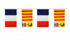 France - Provence-Alpes-Côte d'Azur Friendship Bunting Flags - 12 x 18 inch