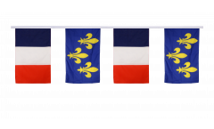 France - Île-de-France Friendship Bunting Flags - 12 x 18 inch