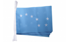 Ireland Starry Plough Bunting Flags - 5.9 x 8.65 inch