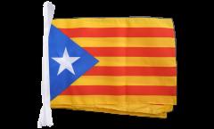 Estelada blava Catalonia Bunting Flags - 12 x 18 inch