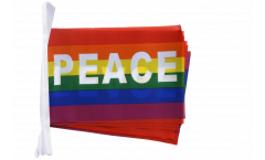Rainbow with PACE Bunting Flags - 5.9 x 8.65 inch