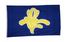 Belgium Capital Region Brussels Flag - 3 x 5 ft. / 90 x 150 cm