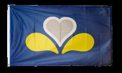 Belgium Capital Region Brussels new Flag