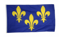France Île-de-France coat of arms with lily Flag