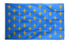 France Fleur-de-lis, blue Flag - 3 x 5 ft.