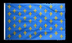 France Fleur-de-lis, blue Flag