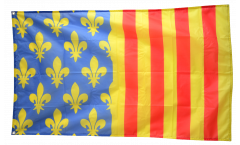 France Lozère Flag - 3 x 5 ft. / 90 x 150 cm