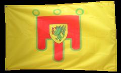 France Puy-de-Dôme Flag - 3 x 5 ft. / 90 x 150 cm