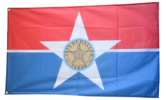 USA City of Dallas Flag