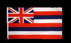 USA Hawaii Flag
