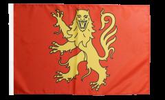 France Aveyron Flag - 12 x 18 inch