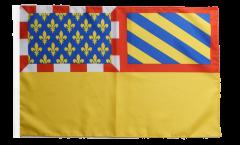 France Côte-d'Or Flag - 12 x 18 inch