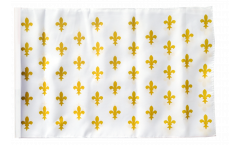 France Fleur-de-lis, white Flag - 12 x 18 inch