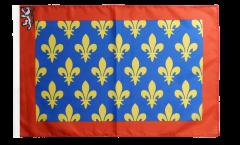 France Sarthe Flag - 12 x 18 inch
