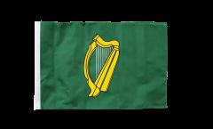 Ireland Leinster Flag - 12 x 18 inch