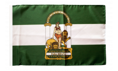 Spain Andalusia Flag with sleeve