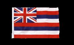 USA Hawaii Flag with sleeve