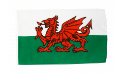 Wales Flag with sleeve